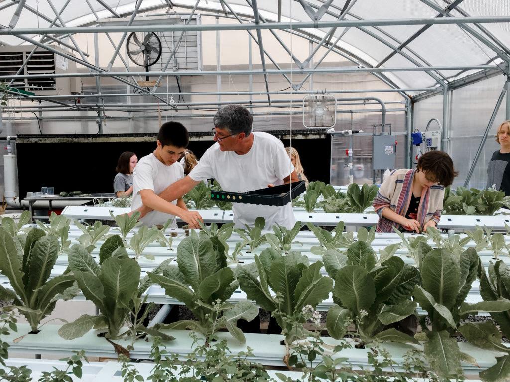 Montessori high school students in a greenhouse