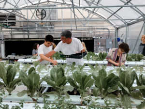Montessori high school students in a greenhouse